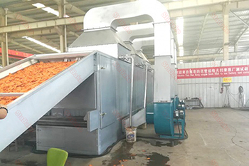 South Africa Carrot Drying Machine Customer